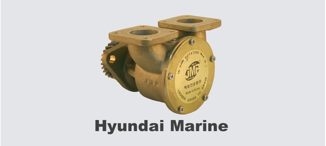 Pompy chłodzenia Daedong/Hyundai